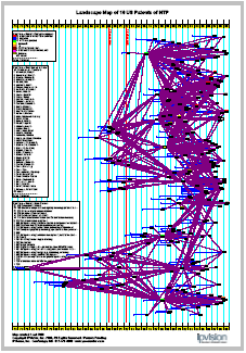 Patent Landscape by IPVision
