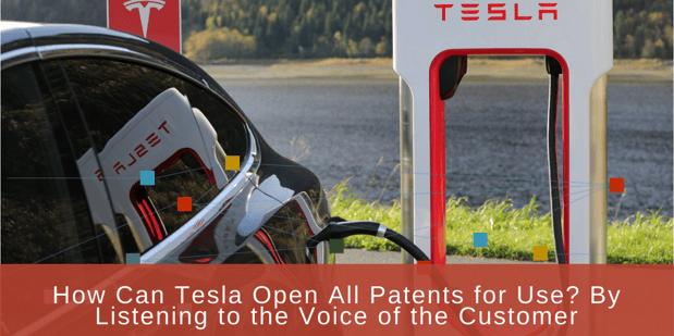 tesla voice of customer